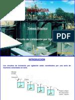 CircuitoLixiviacionPorAgitacion.pdf