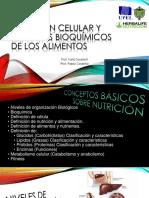Nutrición Celular y Aspectos Bioquímicos de Los Alimentos - Present. Conceptos Basicos