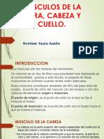 MUSCULO DE LA CARA, CABEZA Y CUELLO.pptx