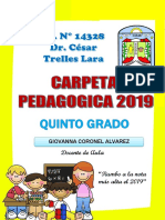 Carpeta Pedagogica 2019 - Copia