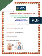 de ber de preguntas de anatomia practicas.docx