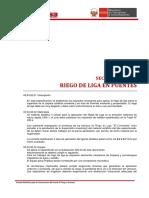 03.03.02 Riego de Liga en Puentes 3