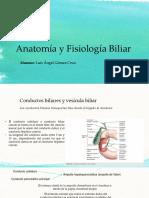 Anatomía y Fisiología Biliar