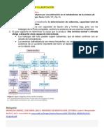 7.1-Anemia- Concepto Clínica y Clasificación----evaluación de La Anemia Microcítica