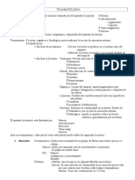 generalidades sacadas del rosato.doc