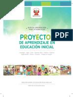 0 Guía de Proyectos