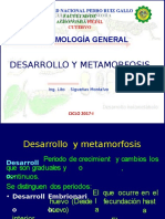 DESARROLLO EMBRION Y POSTEMBRION.pptx