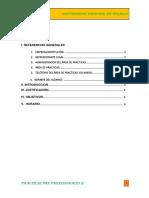 Formato Del Plan de Practicas (1)