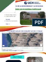 Conociendo Un Ecosistema Particular (2)