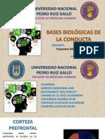 Grupo-01-Psicología-UNPRG.pptx