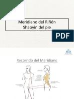 20_Meridiano Del Rinon Shaoyin Del Pie