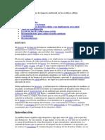 Evaluacion de Impacto Ambiental en Los Residuos Solidos