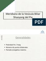 23_Meridiano de La Vescula Biliar Shaoyang Del Pie
