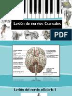 Lesiones Pares Craneales