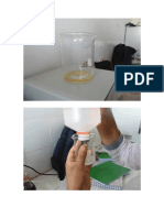 acidez-de-aceite.docx