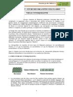 CHAPITRE_XII_LE_CYTOSQUELETTE.pdf