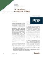 Dialnet-EvaluacionDeCanalesYCalidadDeLaCarneDeBufalo-4835760