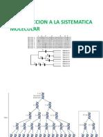 Sistematica Molecular