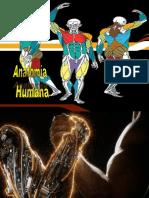 Anatomía para abogados