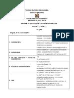 Informe de Supervision (1)