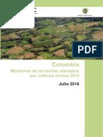 Monitoreo Cultivos Ilicitos 2015