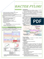 RESUMO - Helicobacter pylori