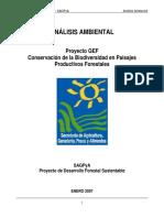 Evaluacion Ambiental GEF.pdf