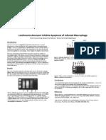 Leishmania donovani Inhibits Apoptosis of Infected Macrophage