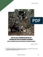 7 Efectos de La Deforestacion De