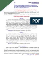 Extracción de Celulosa del romero