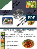 Procesamiento de Frutas y Hortalizas Clase 4 Final (1)