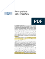 Photosynthesis Carbon Reations