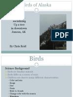 science presentation- birds