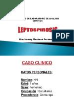 Leptospira