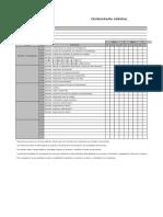 formato cronograma desarrollo