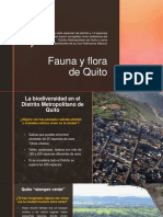 Fauna y Flora de Quito