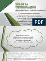 constitucional_exposicion