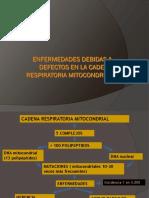 Cadena Respiratoria 2016