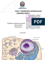 Clase sesión 14 Compartimientos y transporte intracelular (Primera parte) 230419 (1).pdf
