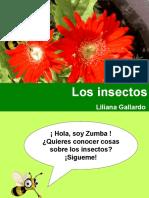 Los Insectos