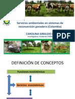 c.giraldo Servicios Ambientales Reconversión Ganadera
