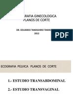 Planos de Cortes Ginecologicos- ECOGRAFIA