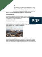 Contaminación ambiental 1