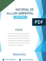 PLAN NACIONAL DE ACCION AMBIENTAL.pptx