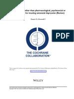 Intervenciones Para Depresion Antenatal Review Cochrane