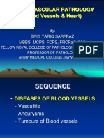 CVS (Heart & Blood vessels) Complete.ppt