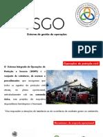 10_SGO.pdf