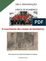 11_ESTRUTURA E ORGANIZAÇÃO DOS CBs.pdf