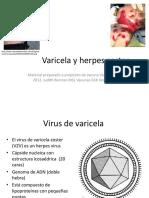 Varicela y Herpes Zoster- Varilrix Judith Aprobada