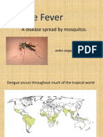 Dengue Fever Bio 62